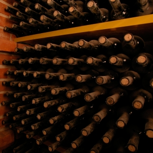Best Istrian wines